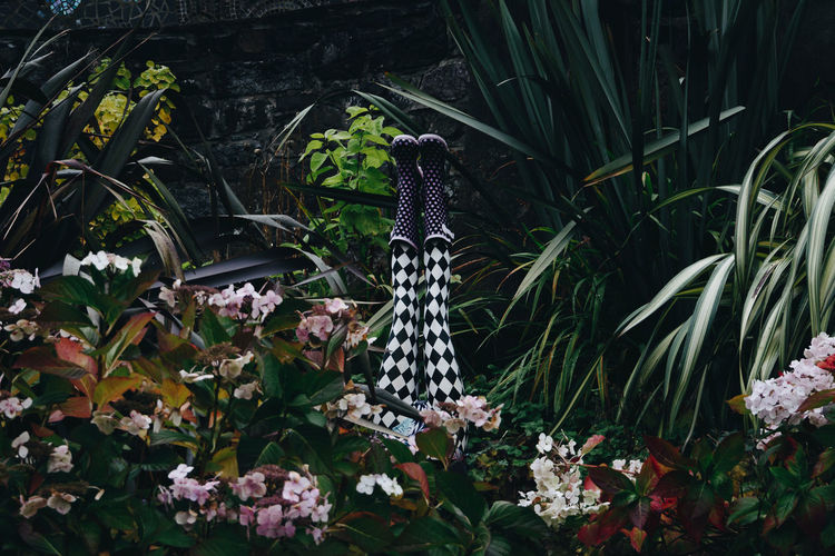 Low Section Of Woman With Feet Up Amidst Plants At Park