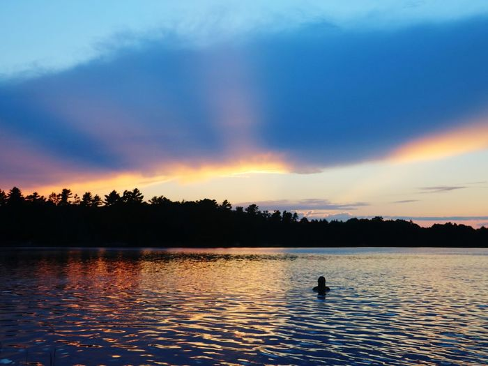 Silhouette man swimming in lake against sky during sunset