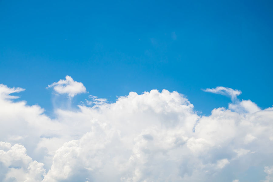 Backgrounds Beauty In Nature Blue Cloud - Sky Cloudscape Day Fluffy Full Frame Heaven Low Angle View Nature No People Outdoors Scenics Sky Sky Only Softness The Natural World Tranquil Scene Tranquility White Color