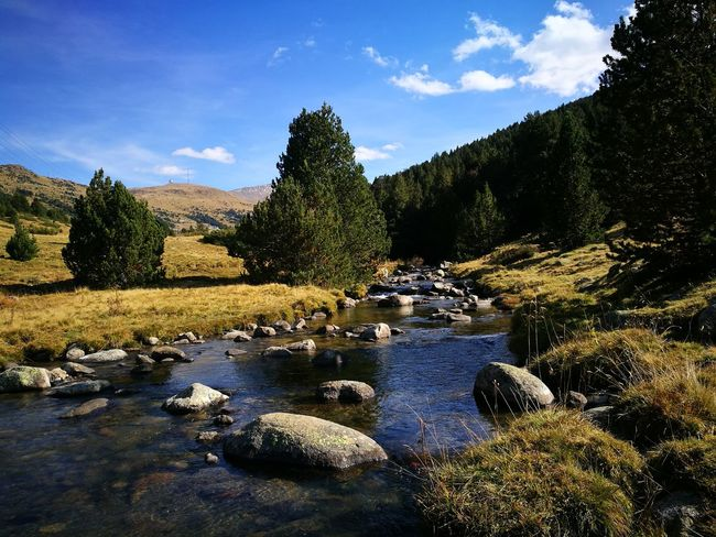 Cloud - Sky Outdoors No People Nature Landscape Beauty In Nature Andorra🇦🇩 Forest River Lost In The Landscape Perspectives On Nature