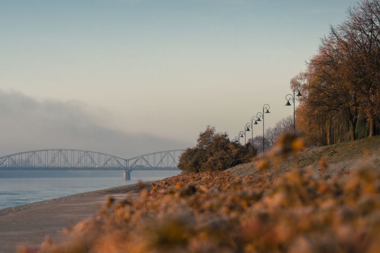 Beauty In Nature Bridge - Man Made Structure City Cityscape Cityscapes Day Fog Landscape Morning Nature No People Outdoors River River Collection River View Riverbank Riverside Scenics Sky Toruń Travel Destinations Tree Vistula River Water Wisła River Neighborhood Map