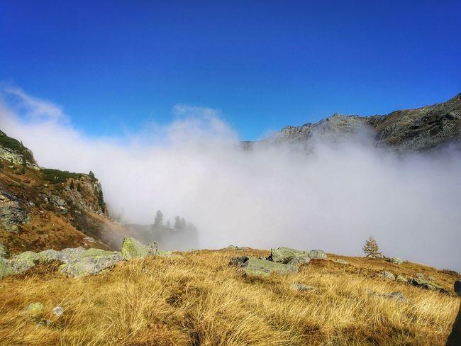 Outdoors Nature Eyemphotography EyeEmNewHere Autumn Foggy Hike Mountain Free Sun Loveit Austria Mountain Blue Sky Landscape Travel