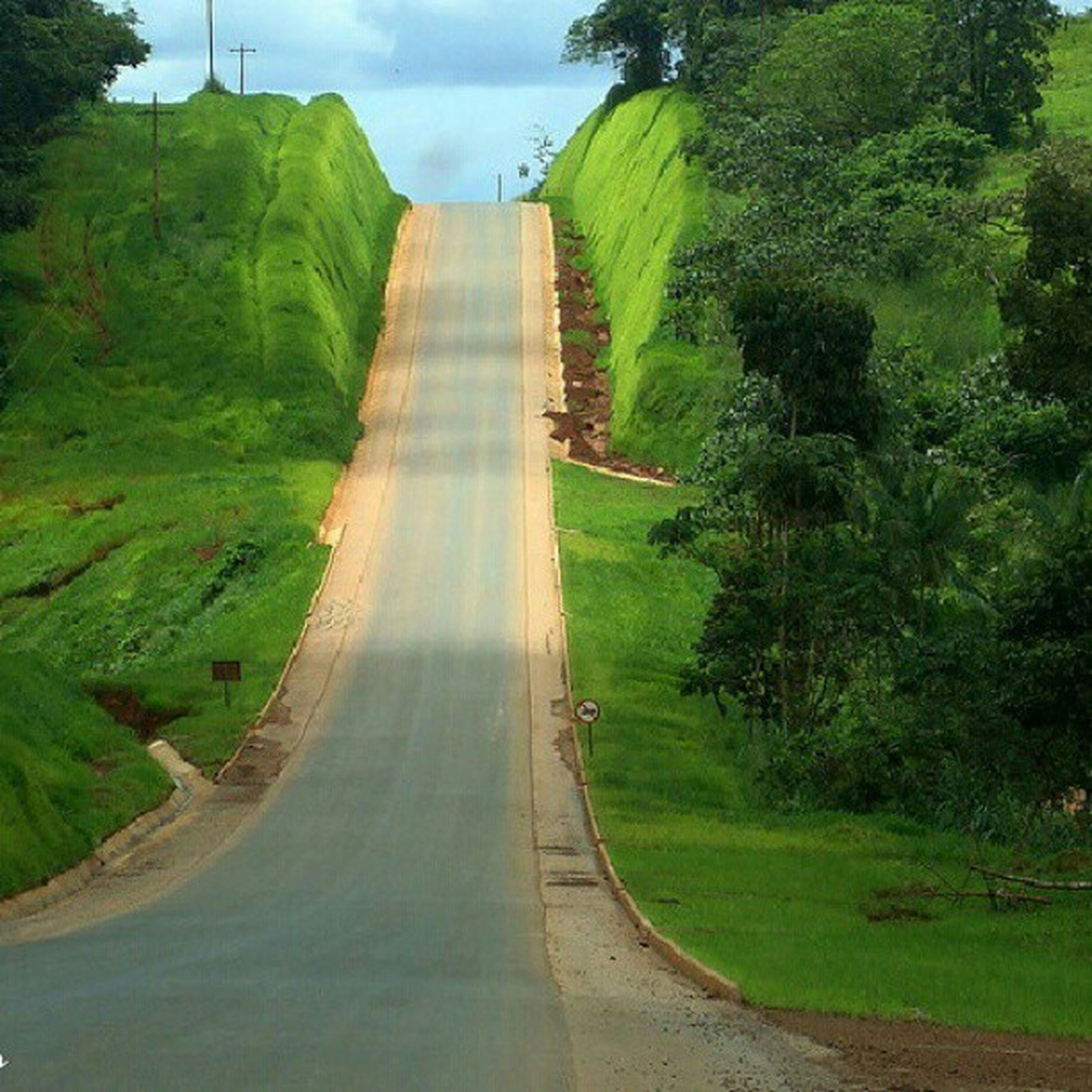 green color, the way forward, grass, tree, sky, growth, road, diminishing perspective, green, landscape, vanishing point, nature, tranquility, plant, tranquil scene, built structure, day, transportation, empty, architecture
