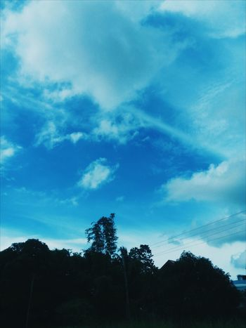Day Outdoors Beauty In Nature Blue Tree Sky No People Cloud - Sky Nature Growth EyeEm Best Shots EyeEm Nature Lover