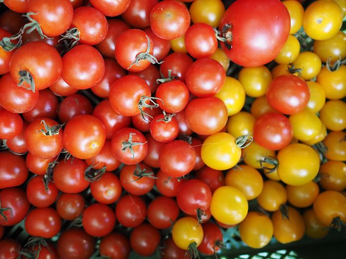 Detail Shot Of Tomatoes