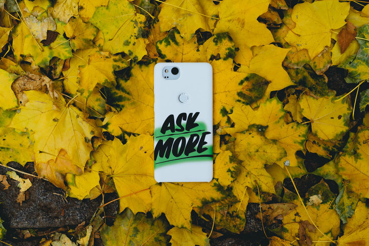 Autumn Change Close-up Communication Day Dry Fall Falling Guidance High Angle View Human Representation Leaf Leaves Nature No People Outdoors Plant Part Sign Symbol Text Yellow