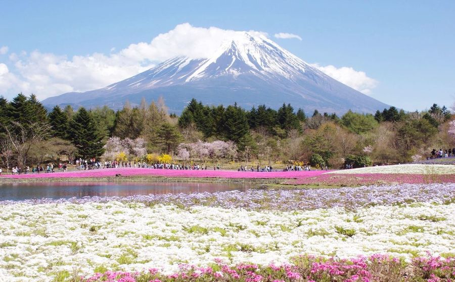 The Majesty Mtfuji Japan Photography Japantravel Mountain Nature Sky No People Scenics Beauty In Nature Cloud - Sky Outdoors