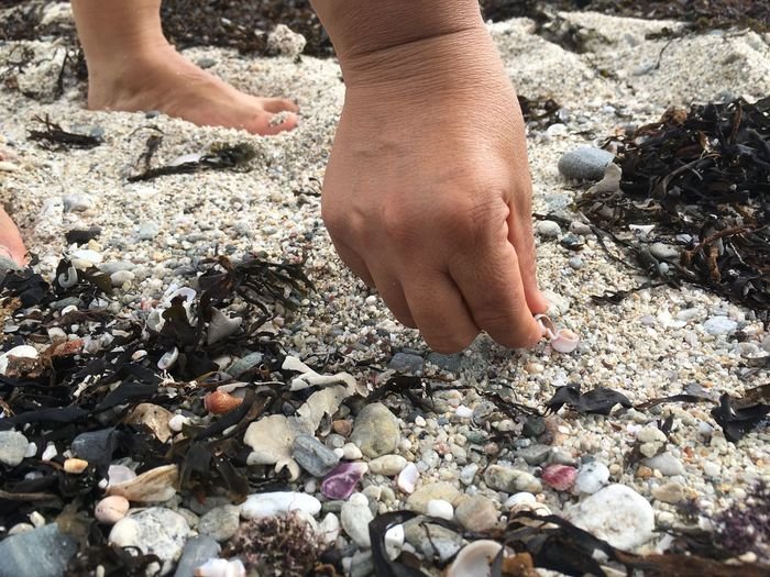One Person Human Body Part Pebble Low Section Beach Barefoot Childhood Day Outdoors Vacations Human Leg Child Leisure Activity Nature Real People Human Hand Close-up Adventure People No Filter