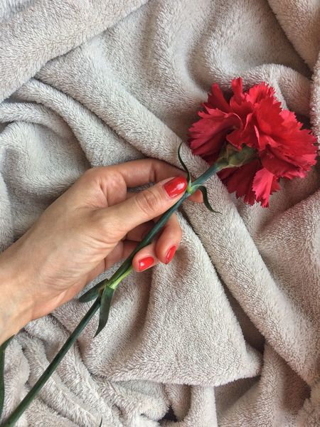 Red Human Hand One Person Human Body Part Close-up Holding Women Real People Flower One Woman Only Indoors  Adults Only Freshness Purity Gentle Tranquil Scene Beauty In Nature Beautiful Beauty Pureness Sensitivity Art