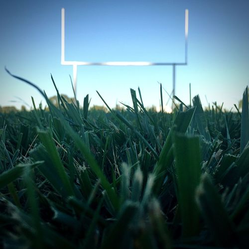 I spent a lot of time here at this track for football practice... it is here I decided to Pursue photography ☺️👍🏻 Grassy Fields Green My Year My View Low Angle View Low Angle On The Ground Looking Up Practice Makes Perfect Hard Work Never Give Up FoFootballoFootball PracticepUprightsoTouchdownrGrasskSkyeBeautiful DayePerspective PhotographynEnjoying LifeaTaking PhotosaWalking The TrackhThe Color Of SportrGreen ColoriField