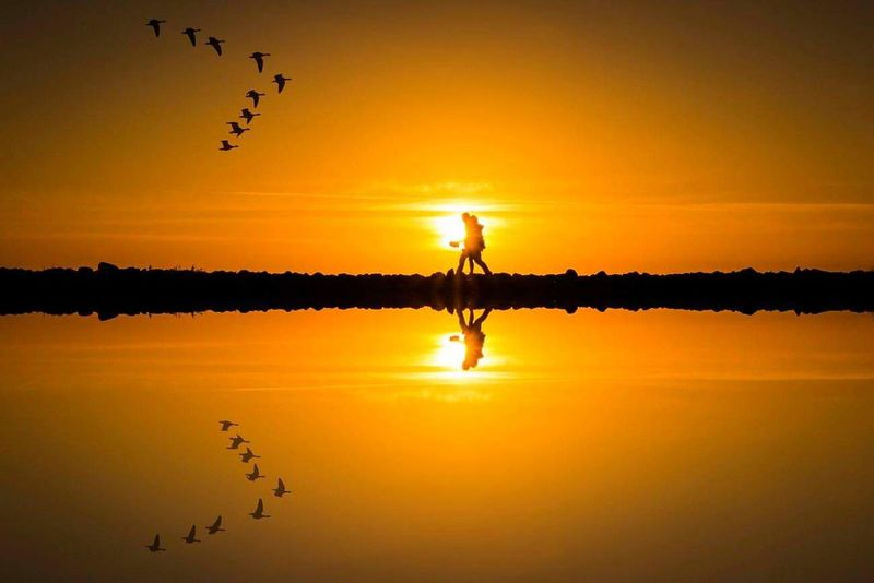 reflection from above Beach Landscape Travel Beachlife Sunsets Landscape Nature Landscapephotography Traveling Sunsetlovers Beachlover Sunsetporn Sunsetsniper Landscapelover Natureshots Traveller Norway Sunset Reflection Lake Silhouette Water Nature Flock Of Birds Bird Sky Beauty In Nature Outdoors People