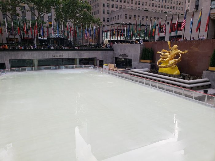 The Rink at