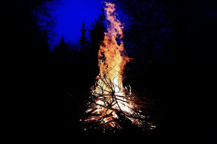 Brandenburg Brieselang Camping Feuer Lagerfeuer Nacht Bonfire Dark Fire Flame Forest Land Nature Night No People Outdoors Sky Tree