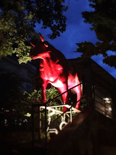 That's Bull..🐂!! Tree Low Angle View Built Structure No People Architecture Building Exterior Outdoors Branch Night Flag Leaf Sky Nature Close-up