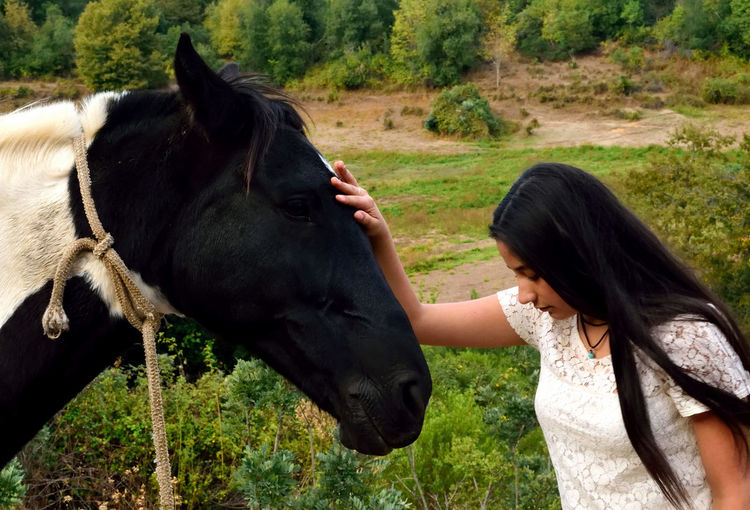 Young woman touching horse while standing on field