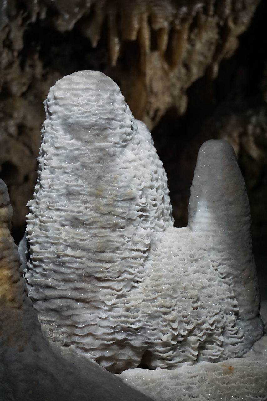 no people, rock - object, sculpture, close-up, nature, day, statue, beauty in nature, outdoors, cave