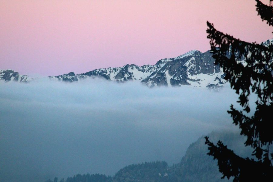 Sea Of Fog Nebelmeer Fog Sunrise Mountain Beauty In Nature Nature Mountain Range Scenics Snow Cold Temperature Winter Sky Tree No People Tranquility Outdoors Landscape Clear Sky Sunset Peak Day Freshness Shades Of Winter