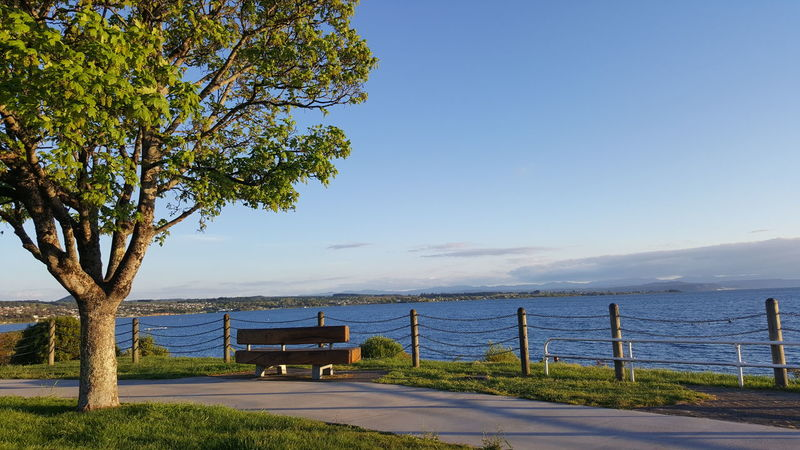 one rest @ Lake Taupo Lake Taupo Peace Beauty In Nature Nature No People Outdoors Relaxation Rest Scenics Sky Tranquil Scene Tranquility Tree Water