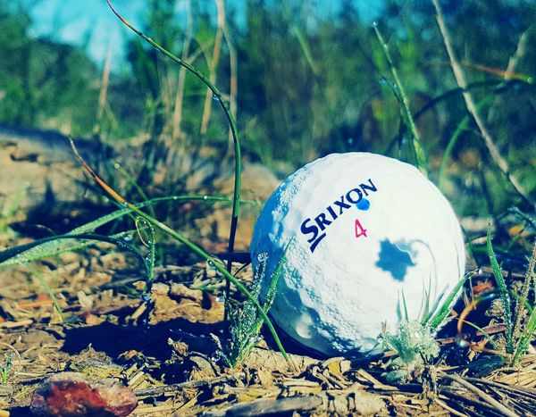No People Close-up Nature Shadow Morning Dew Golf Ball Spring Photography
