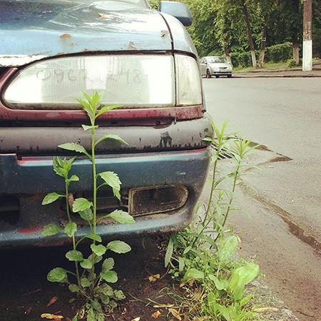 Брошенки нерадивых автотреш олдскул Autotrash Old_car kiev oldschool дневник_наблюдателя