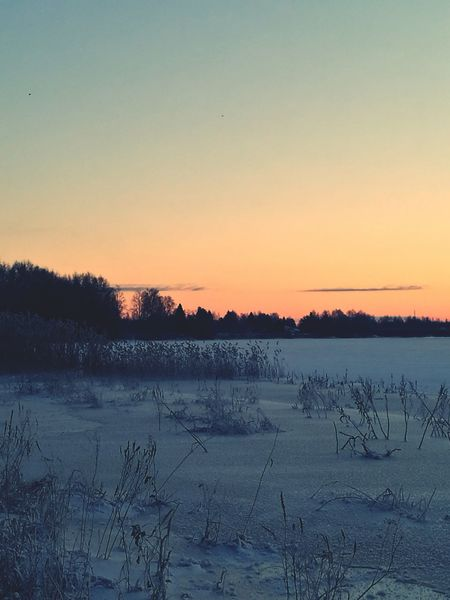 Riverbank River View Iced River ❄ Snow Covered No People Outdoors
