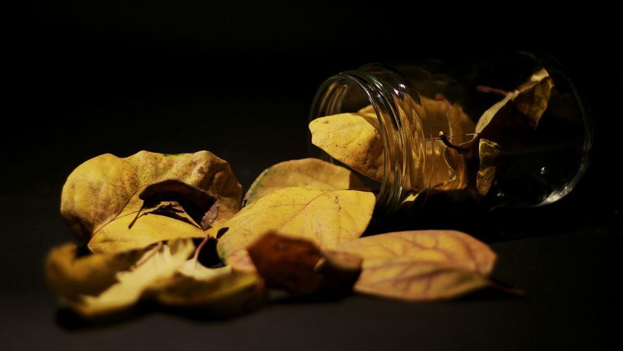 Close-up of dried leaves on table against black background