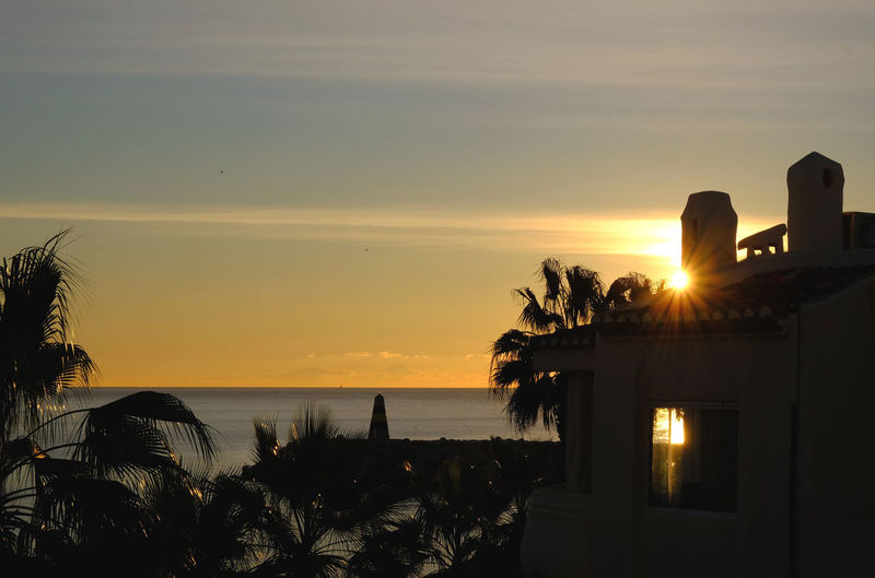 Benalmádena, Malaga, Spain Lighthouse Nature Palm Tree Silhouette Tranquility Beach Beauty In Nature Costa Del Sol Day Horizon Over Water No People Outdoors Palmtree Scenics Sea Sky Sun Sunrise Sunset Tourism Tourist Destination Tranquil Scene Vacation Water