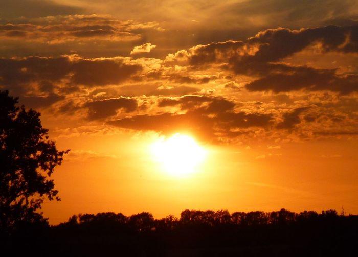 Beauty In Nature Cloud - Sky Dramatic Sky Idyllic Landscape Majestic Nature No People Orange Color Outdoors Scenics Sky Sun Sunbeam Sunlight Sunset Tranquil Scene Tranquility Tree Yellow Glowing Sun Orange Sky Shining Bright Orange Sunset Sunset Over Trees