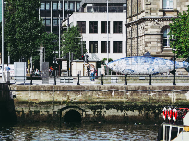 River Lagan in Belfast Belfast City Cityscape River Lagan Architecture Lagan Nature Outdoors Water