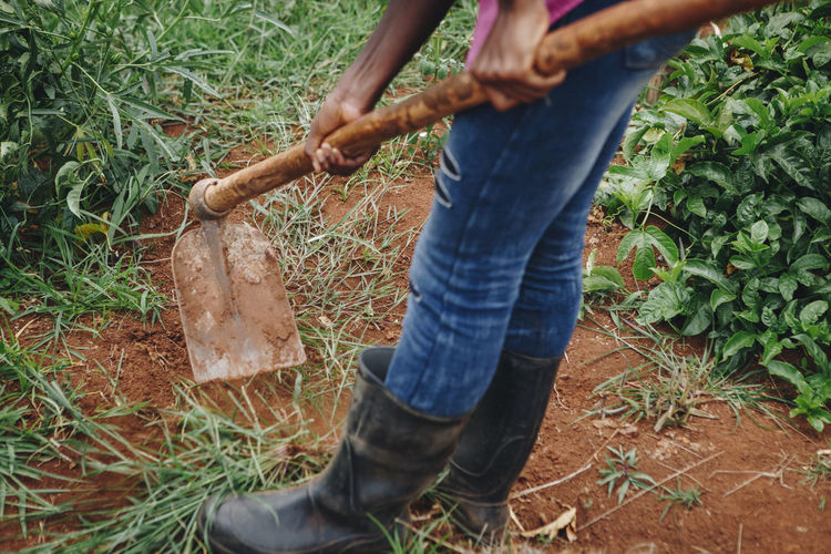 Africa African Agriculture Digging Entrepreneur Farm Farming Fruit Gardening Ground Growing Hoe Mpigi One Woman Only Plantation Plants Real People Rural Rural Life Sina Soil Tools Worker Working Young Woman