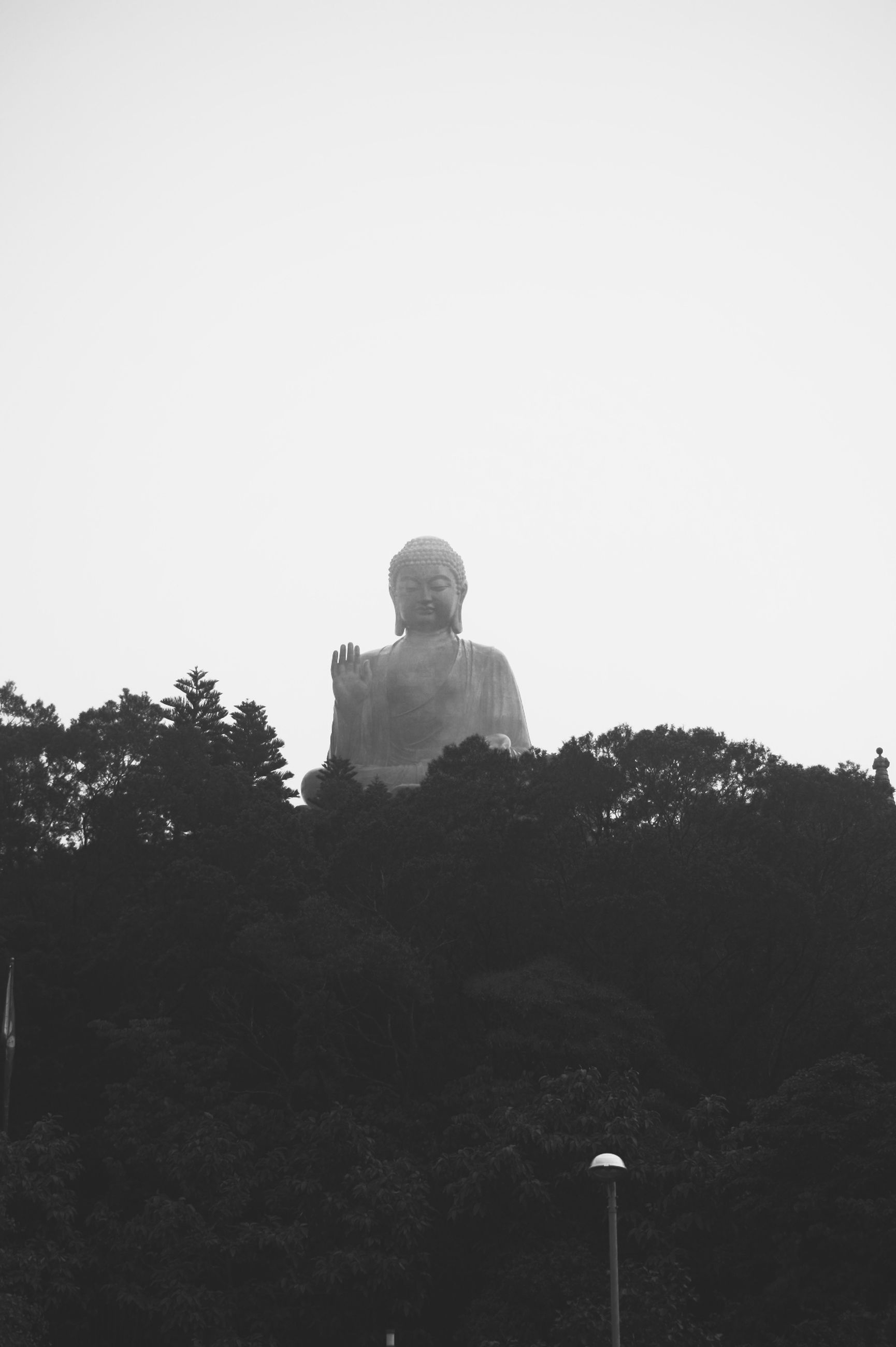 clear sky, statue, low angle view, copy space, sculpture, human representation, tree, art, art and craft, sky, creativity, religion, built structure, outdoors, tranquility, spirituality, silhouette, memorial