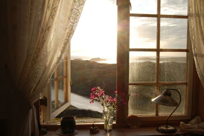 Sun Morning Window Luxury Flower Indoors  Domestic Room Vacations Home Interior No People Nature Day Home Showcase Interior Morning Sky Nature Photography Sunshine Water Bouquet