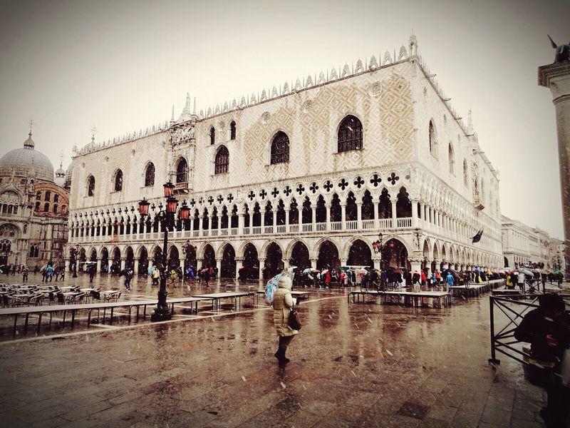 Venezia San Marcos