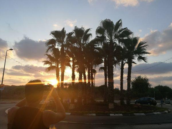 Chasing the sun Sunset Netanya Nature Palmtrees Beauty Zenmoment