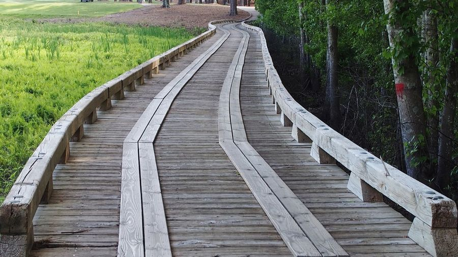 boardwalk bridge across marshland Bradleywarren Photography Bradley Olson Room For Text Room For Copy Copy Space Copyspace Backgrounds Background South Carolina Geometry Pattern Lines The Future Walking Away Wooden Bridge High Angle View Boardwalk Leading Footbridge Walkway Bridge - Man Made Structure Diminishing Perspective Long Parallel The Way Forward Empty Road Countryside Pathway Narrow vanishing point Woods