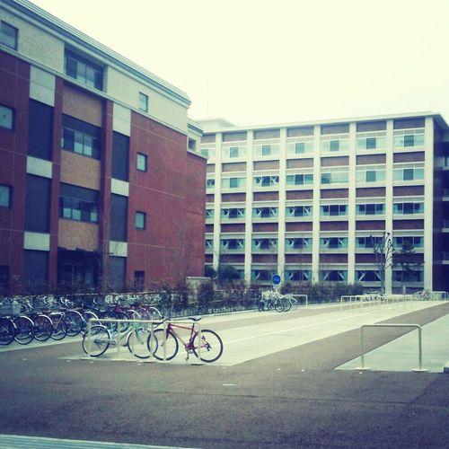 Semester break University Campus is litle bit lazy... :)