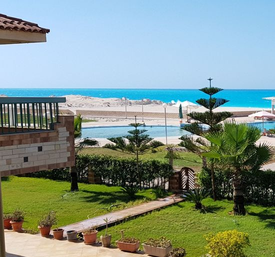North coast, Alexandria, Egypt Water Clear Sky Tree Sea Beach Palm Tree Sunny Sand Sky Horizon Over Water Calm Tourist Resort Infinity Pool Wave Resort