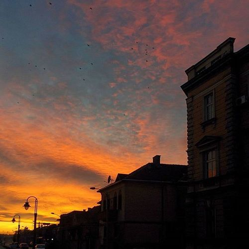 Sunset Serbia Niš Srbija Sun Winter Europe Street Architecture Birds Evening Sky Clouds Bluesky VSCO Vscocam Vscogrid Snapseed Nexus5 Nexus5photography Instagood Instamood Romantic Landscape City urban dark day tbt