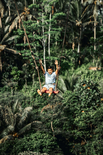 View of person on swing in forest