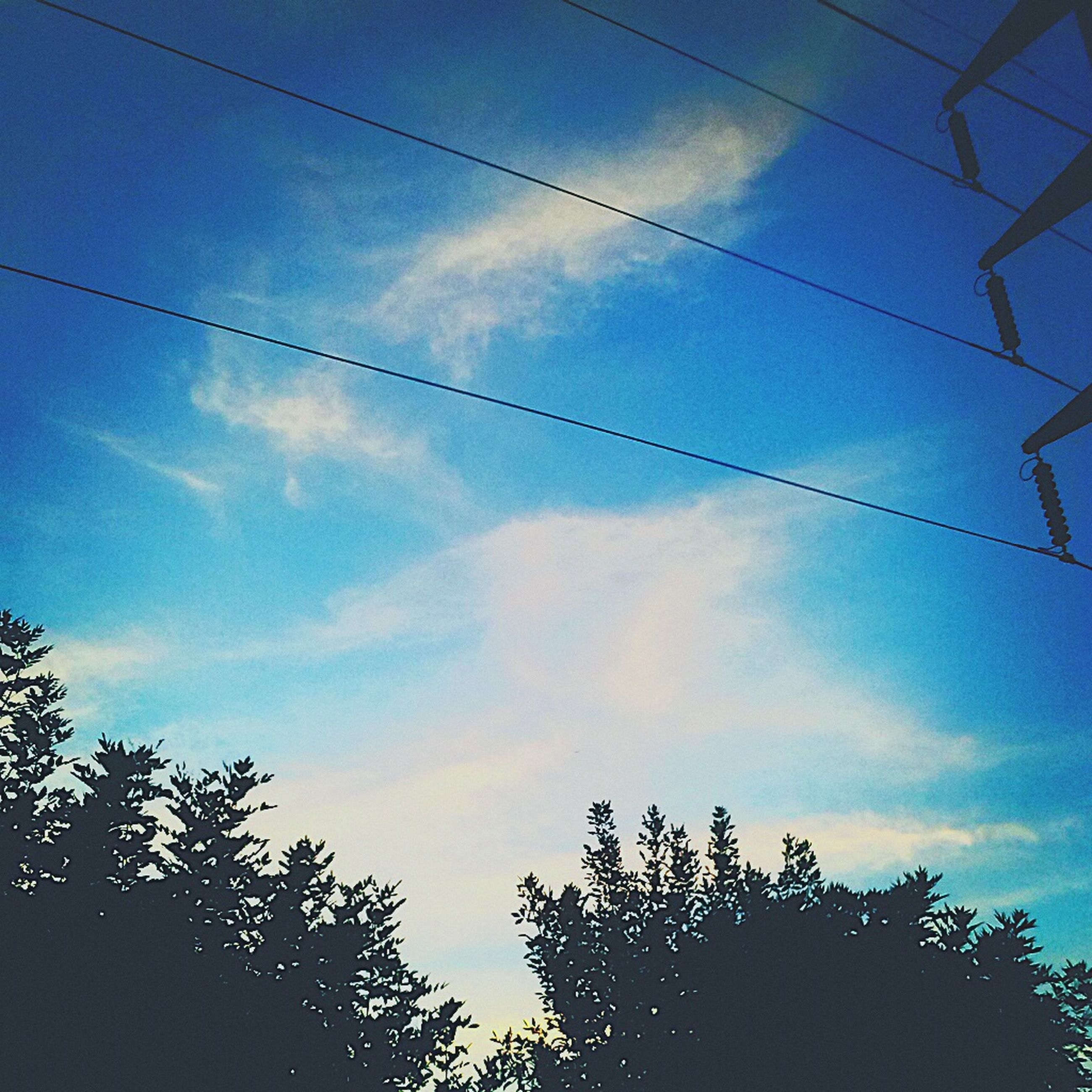 low angle view, power line, sky, tree, silhouette, blue, electricity, cable, cloud - sky, electricity pylon, power supply, tranquility, nature, beauty in nature, cloud, scenics, tranquil scene, vapor trail, connection, outdoors