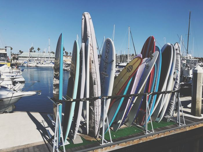 Sea Life Sea Longboard Board Surf Outdoors Day Sunlight Water Clear Sky Sky No People Nautical Vessel Nature Architecture Close-up