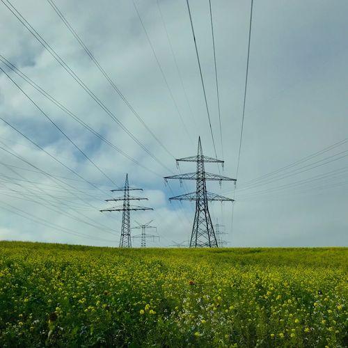 energy networks Renewable Energy High Voltage Grid Sky Plant Field Technology Electricity Pylon Landscape Nature