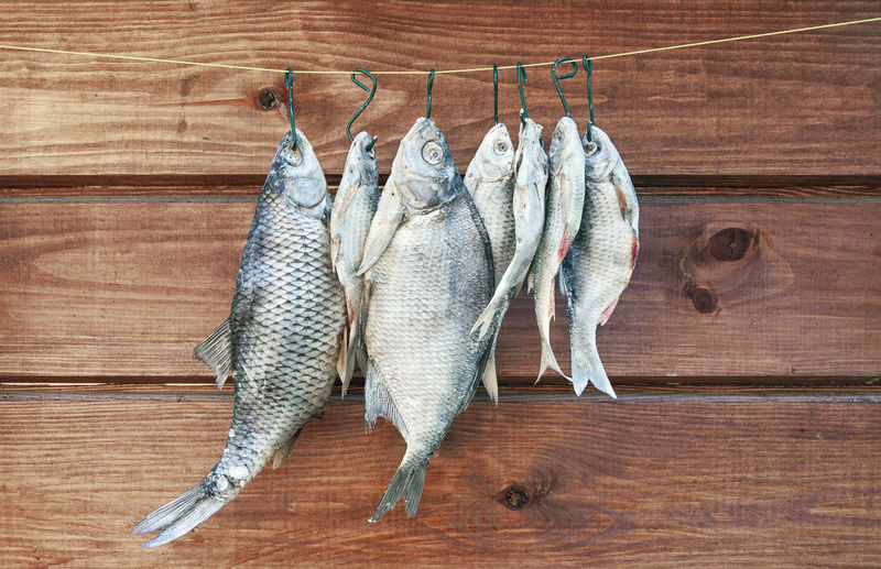 Close-up of fish hanging against wood