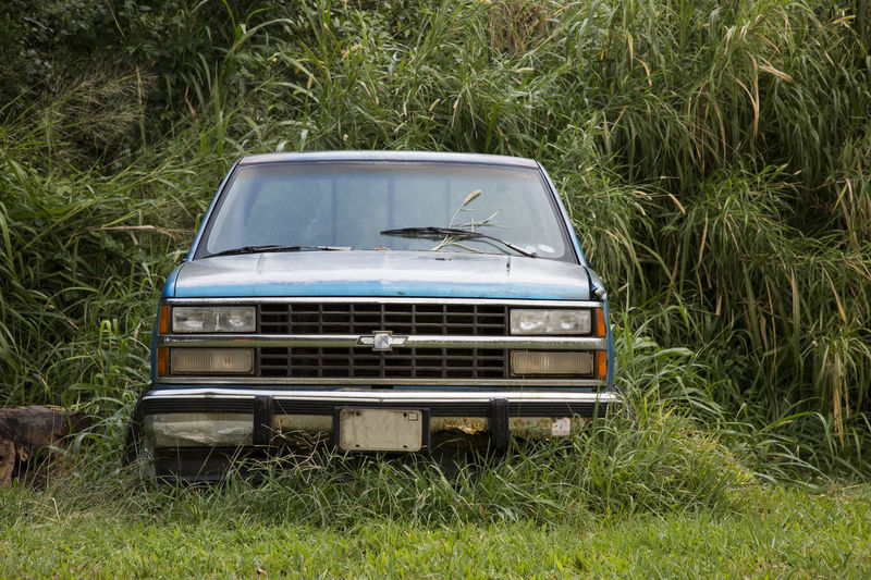 Forgotten and overgrown broken car Automobile Forgotten Glitch Malfunction Overgrown Abandoned Brake Down Car Day Field Grass Growth Jungle Land Vehicle Land Vehicles Lush Green Grass No People Outdoors Tree Truck