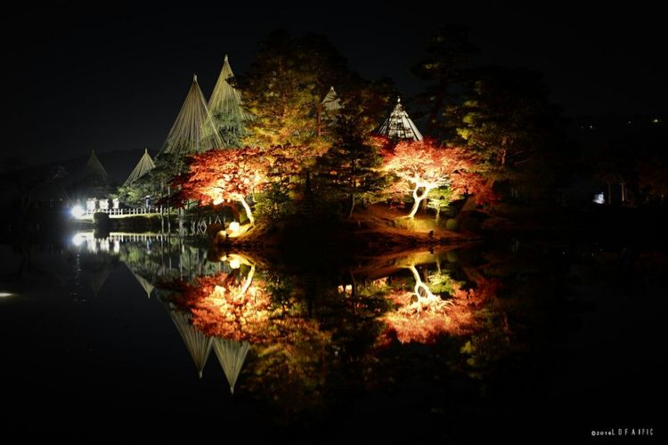 Reflection Lake Reflection Night Water Illuminated Outdoors Long Exposure No People Tree Beauty In Nature Landscape Bridge - Man Made Structure Nature