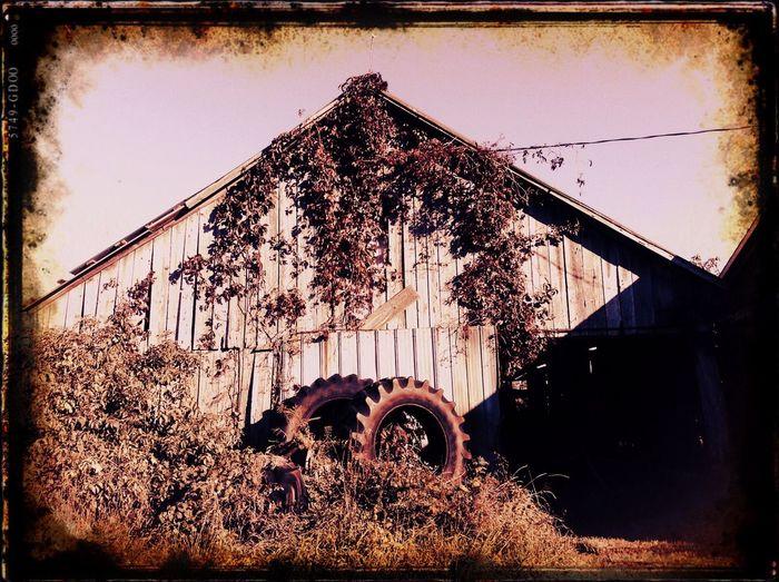 Daytripping in Southern Ontario... Shack Sniper Rural Scenes Rurex