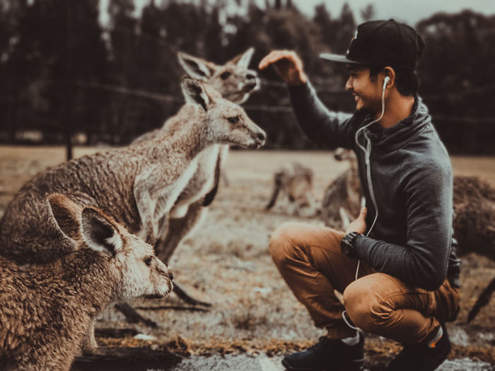 Full length of smiling man looking at kangaroos in zoo