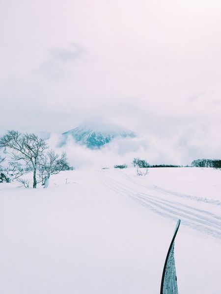 Niseko Japan 北海道 日本 Japan Travel Snowboard White Winter Snow Cold Temperature Weather Nature Scenics Sky Beauty In Nature Landscape Tranquil Scene Tranquility Tree Outdoors Mountain Day Cloud - Sky No People The Great Outdoors - 2017 EyeEm Awards