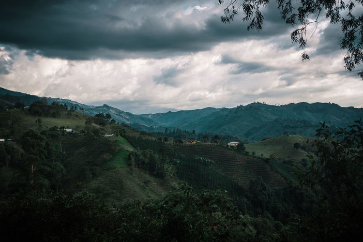 Going for a walk in Salento. No People Outdoors Land Nature Cloud - Sky Environment South America Latin America Landscape Moody Dark Mountain Exploration Adventure Explore Tranquil Scene Non-urban Scene Idyllic Remote Travel Destinations Ominous Overcast Rural Scene Agriculture Coffee
