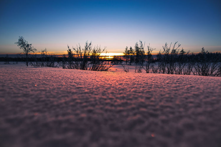 Low angle sunset Sky Sunset Tranquility Tranquil Scene Nature No People Beauty In Nature Clear Sky Land Outdoors Cold Temperature Winter Surface Level Lapland, Finland Sunlight Nature_collection Snow Landscape Freshness Hanging Out Hello World Eye4photography  Scenics Colors Taking Photos